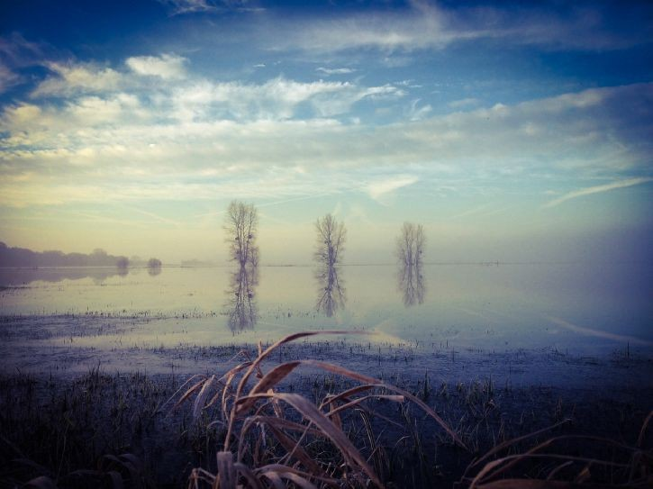 Graignes Marais : Winters day